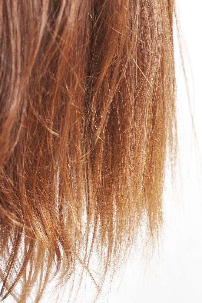 Repair Split Ends Brittle Hair Dry Brittle Hair Caring For Colored Hair