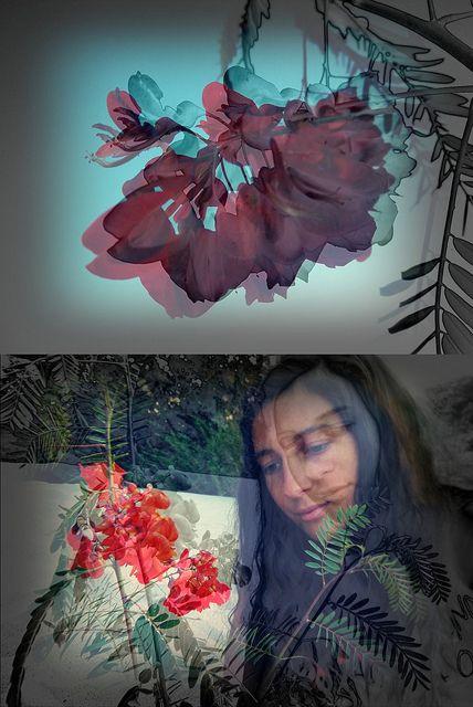 Una flor puede tener mas sabíduría que un libro..