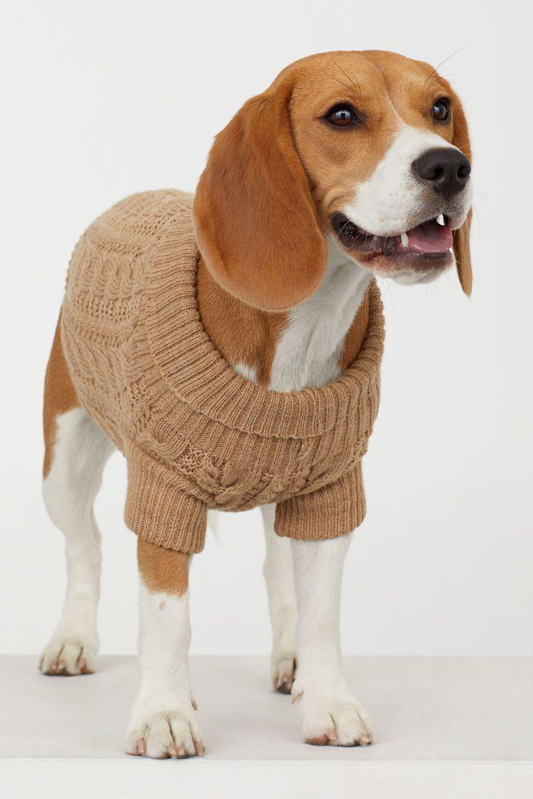 Cable Knit Dog Jumper Moda Beleza