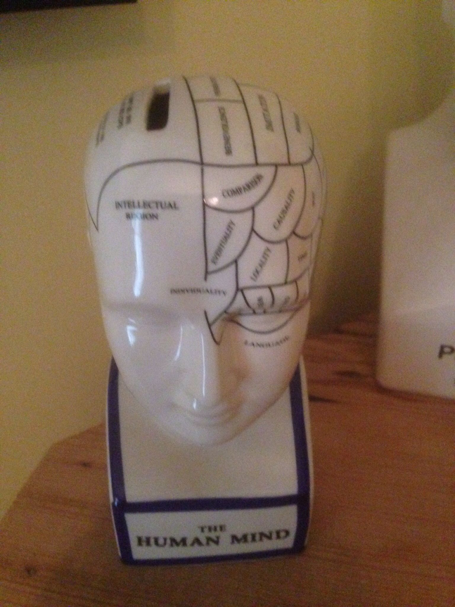 Bank From Home Goods In Grand Rapid Michigan Phrenology Head