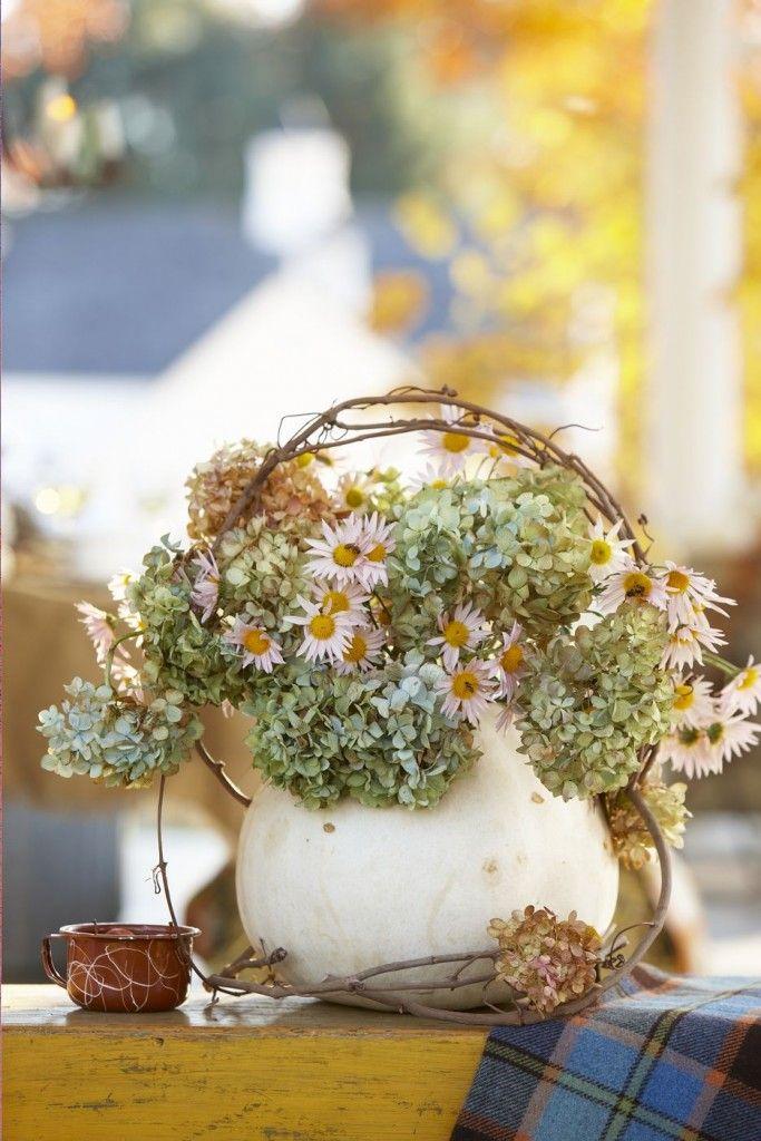 Pumpkin vase with dried hydrangeas and Montauk daisies