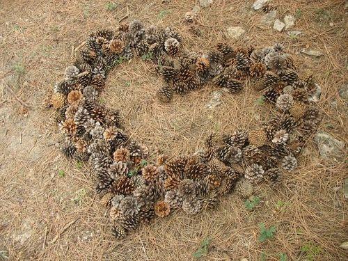 Heart - pinecones