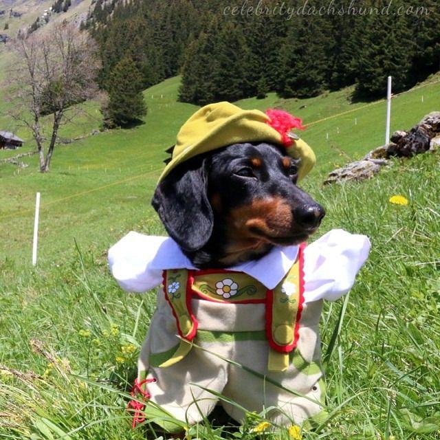 In my lederhosen! (at Europe Trip Part 4: Switzerland!)