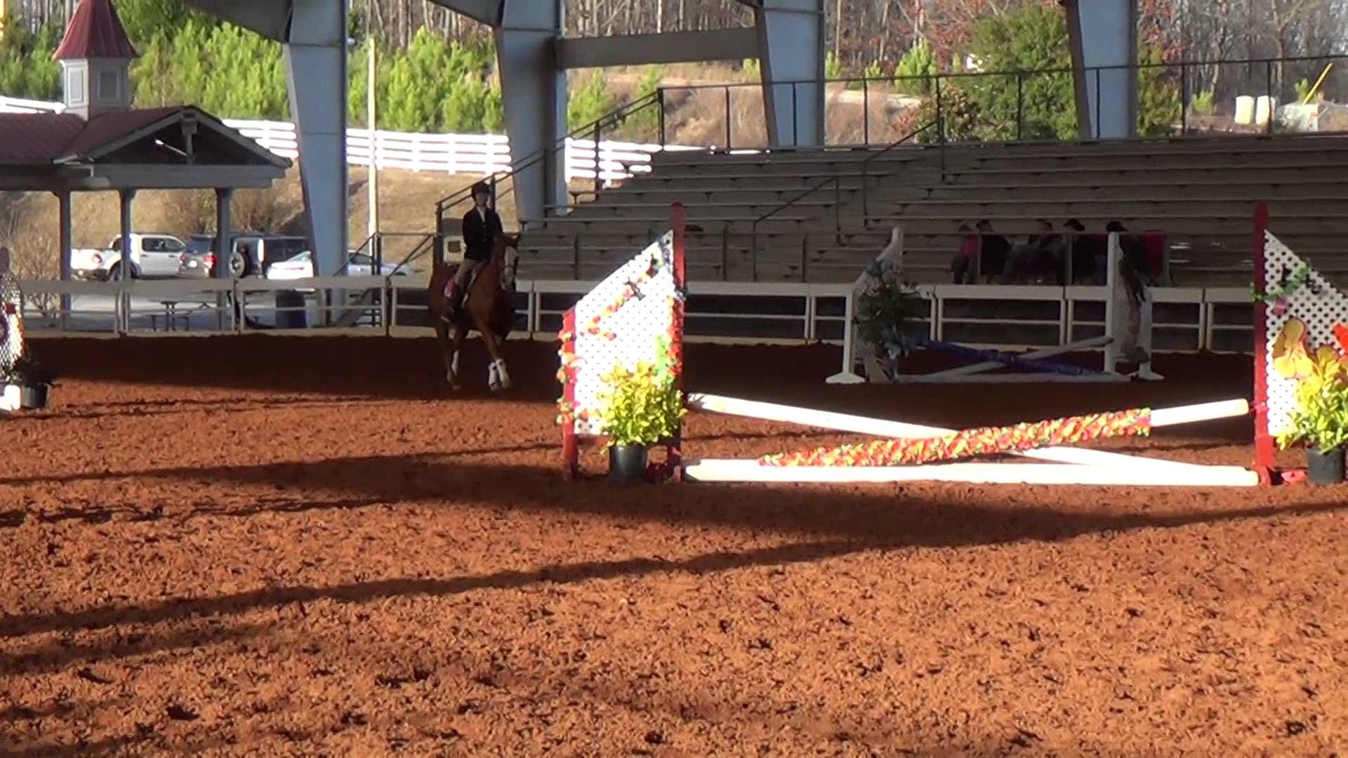 Kayla over Fences