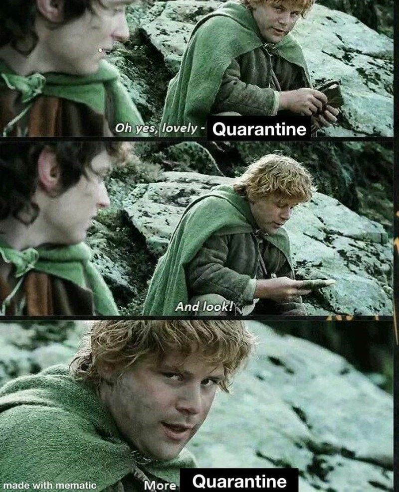 Tolkien Tuesdays Fresh & Timeless LOTR Memes For The True Heads Gallery
