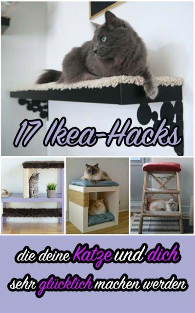 17 clevere ikea hacks die deine katze und dich sehr gl cklich machen werden katze cats. Black Bedroom Furniture Sets. Home Design Ideas