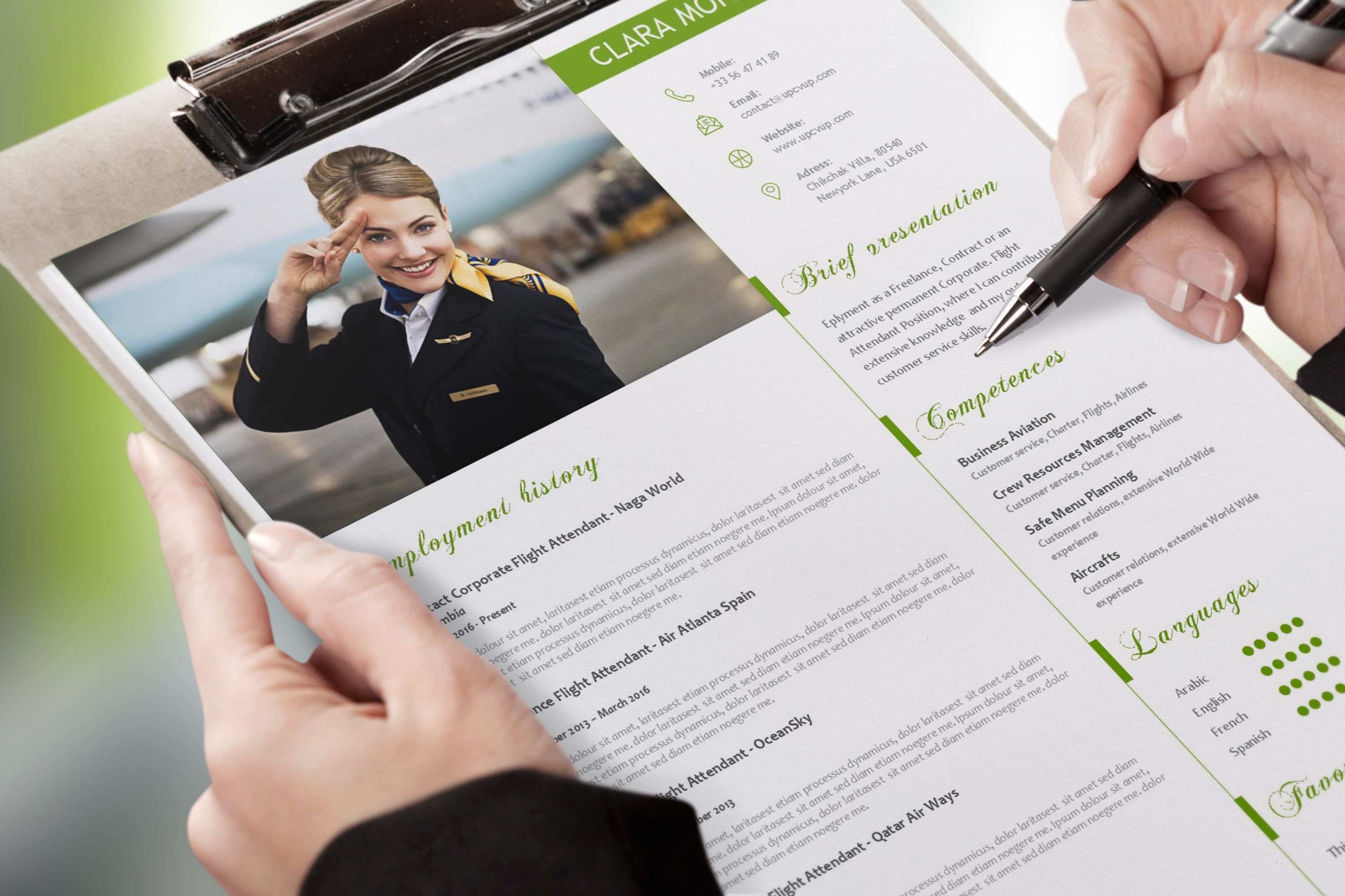 cv template pour cabin crew
