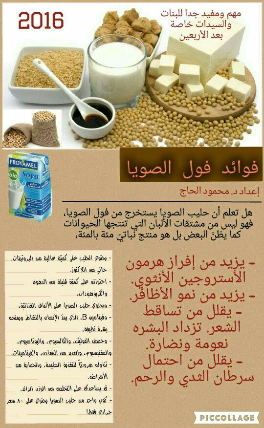 Soya Bean And Milk Soya Bean Food Storage Food