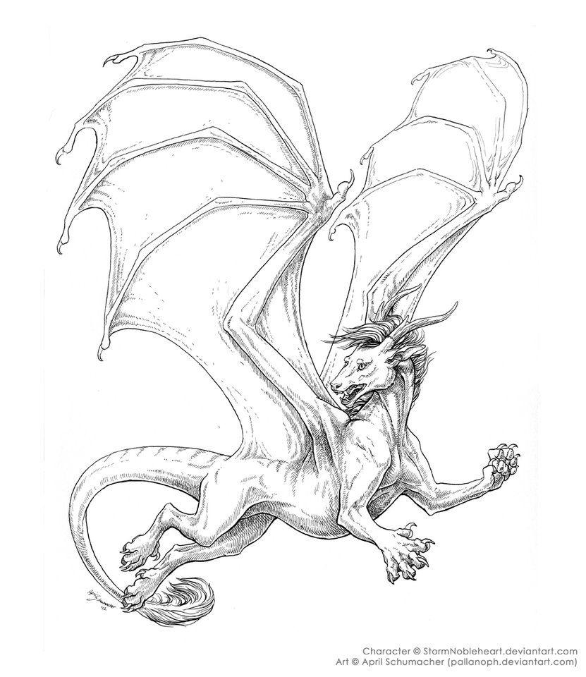 Storm Rising by pallanoph on DeviantArt Dragon Fantasy