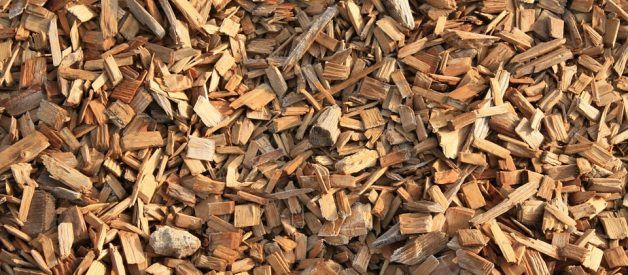 Top 10 Best Wood Chips For Smoking Meat Smoking The Meats