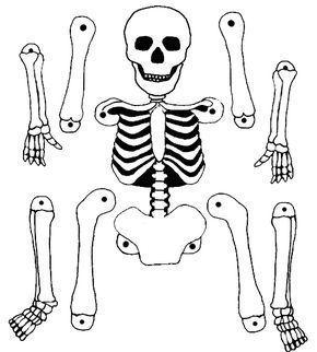 Pantin Squelette Pantin Squelette Bricolage Halloween Esqueleto Para Armar Esqueletos Halloween