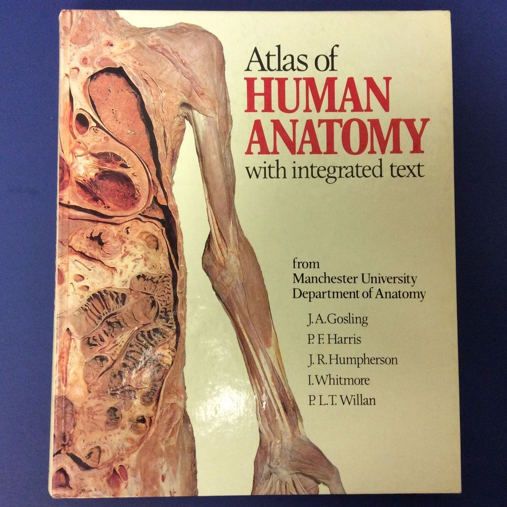 Atlas Of Human Anatomy 1985 Medical Book Integrated Text Gosling
