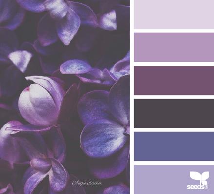 violeta como neutro_flora tones