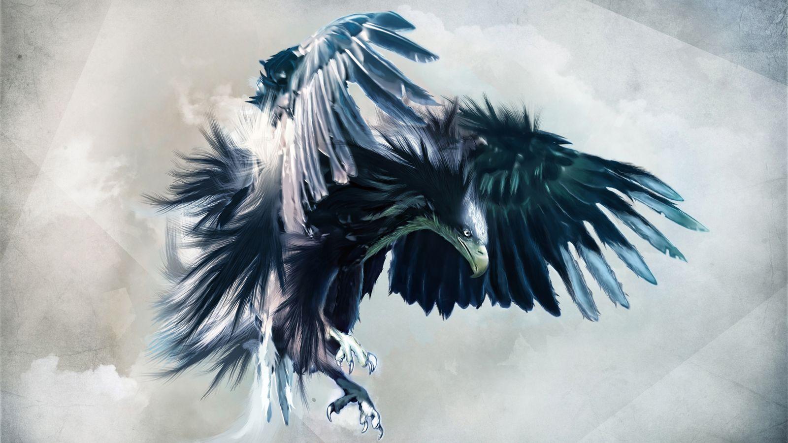 370 Eagle Wallpapers | Eagle Backgrounds