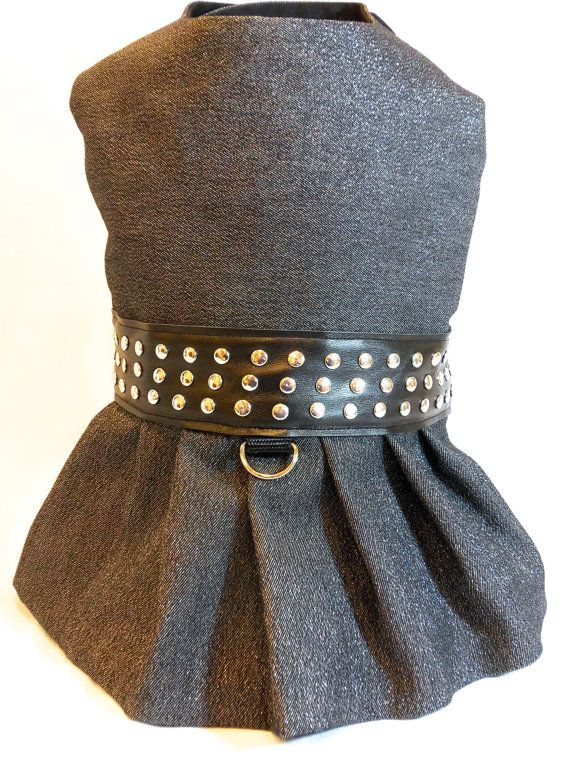 This rocks,! Found it on Etsy.  https://www.etsy.com/listing/127151263/dog-clothes-black-and-silver-denim