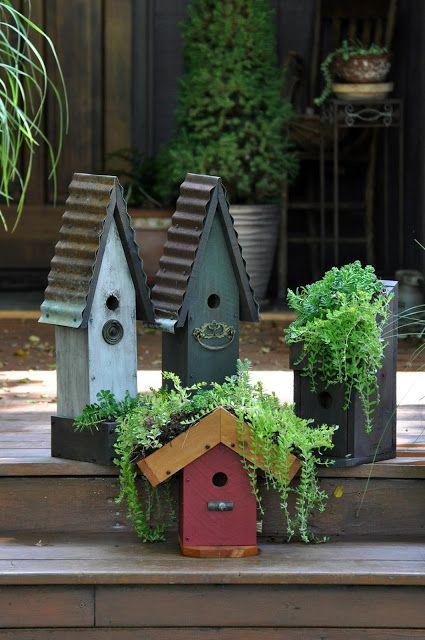 Rebecca\'s Bird Gardens: Photos and What\'s New... | gargen ...