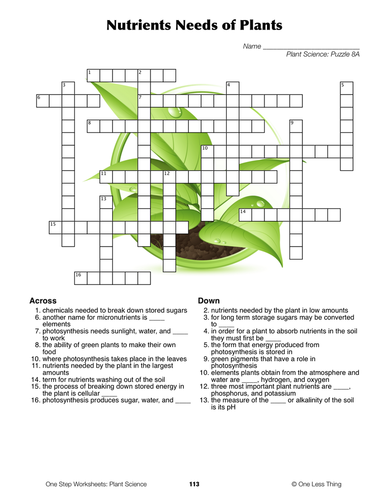 Worksheet Plant Reproduction Worksheet Maybe Something Easier