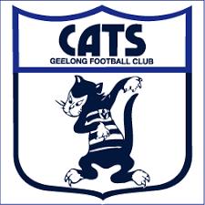 Image Result For Geelong Cats Cheer Squad Cartoon Characters Geelong Cats Geelong Football Club Geelong Football