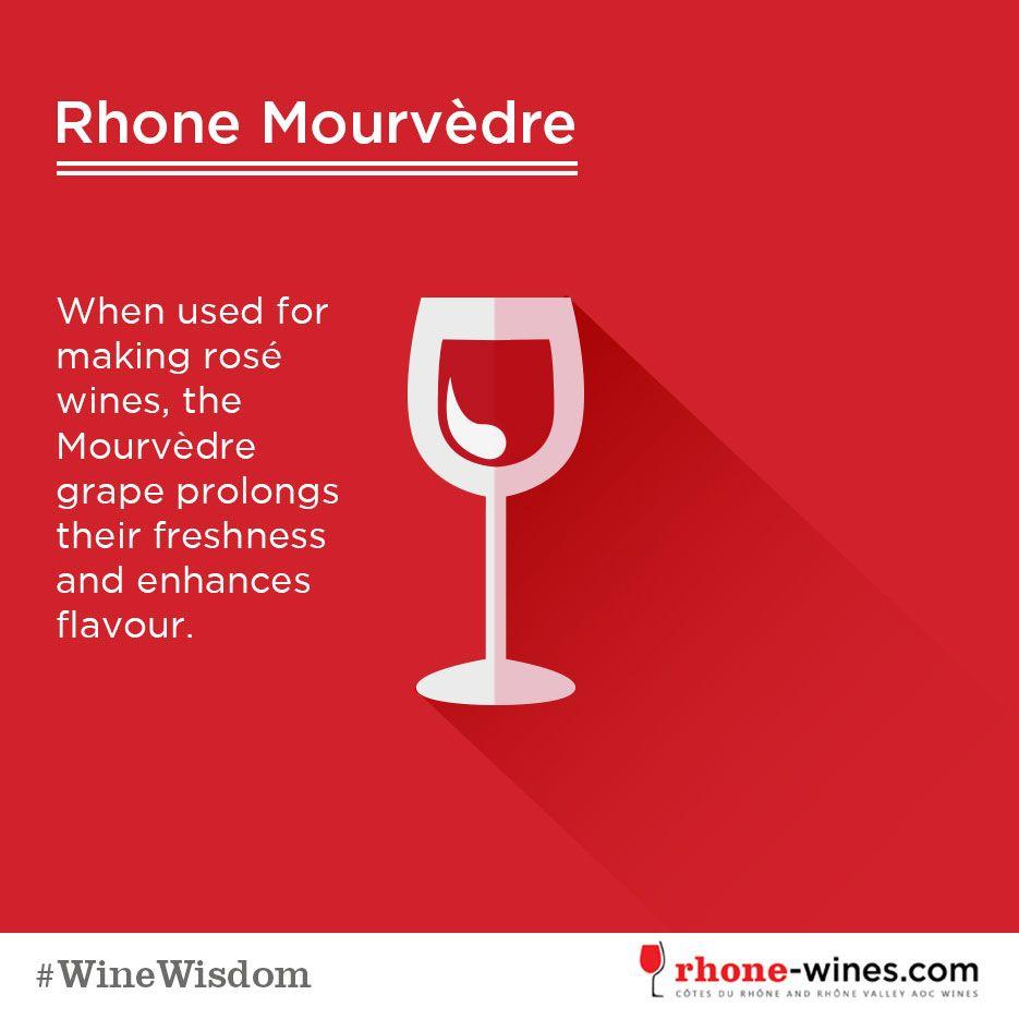 Winewisdon For Rhone Wines Wines Alcohol Rhone