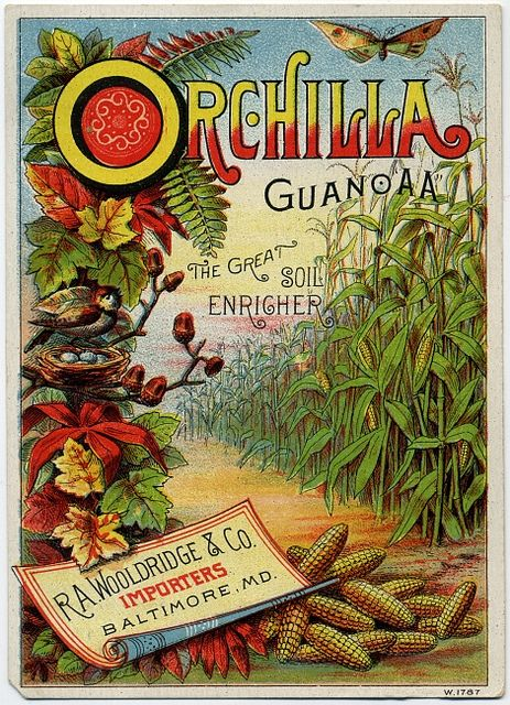 """#illustration....""""Orchilla Guano 'AA' the great soil enricher. R. A. Wooldridge  Co., importers, Baltimore, Md.""""  Let's go buy some guano."""