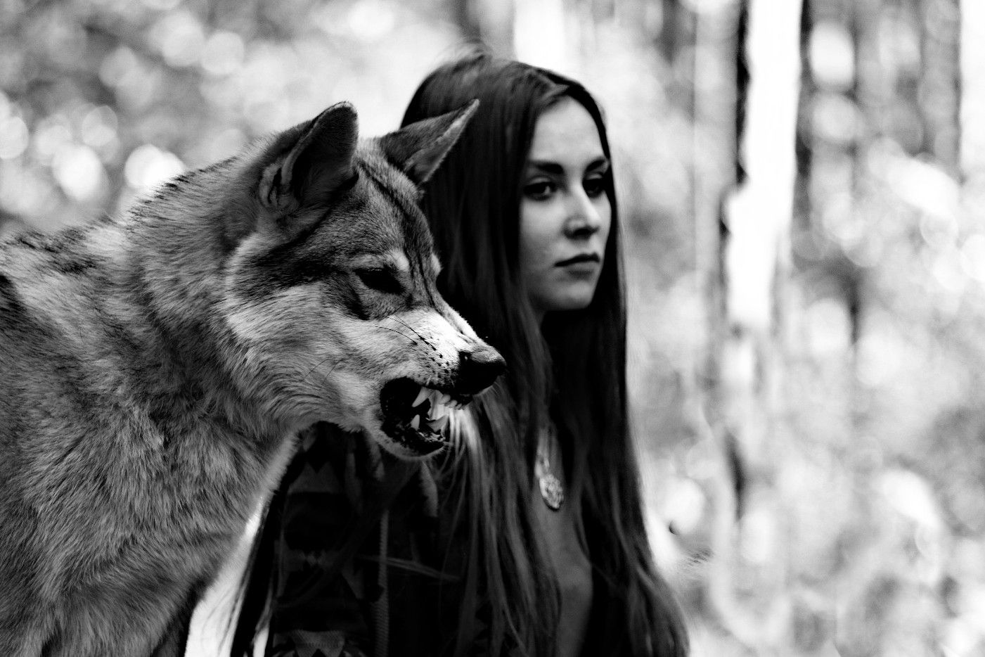 Wolf Snarling Girl  Beautiful Wolves, Wolves And Women -6915