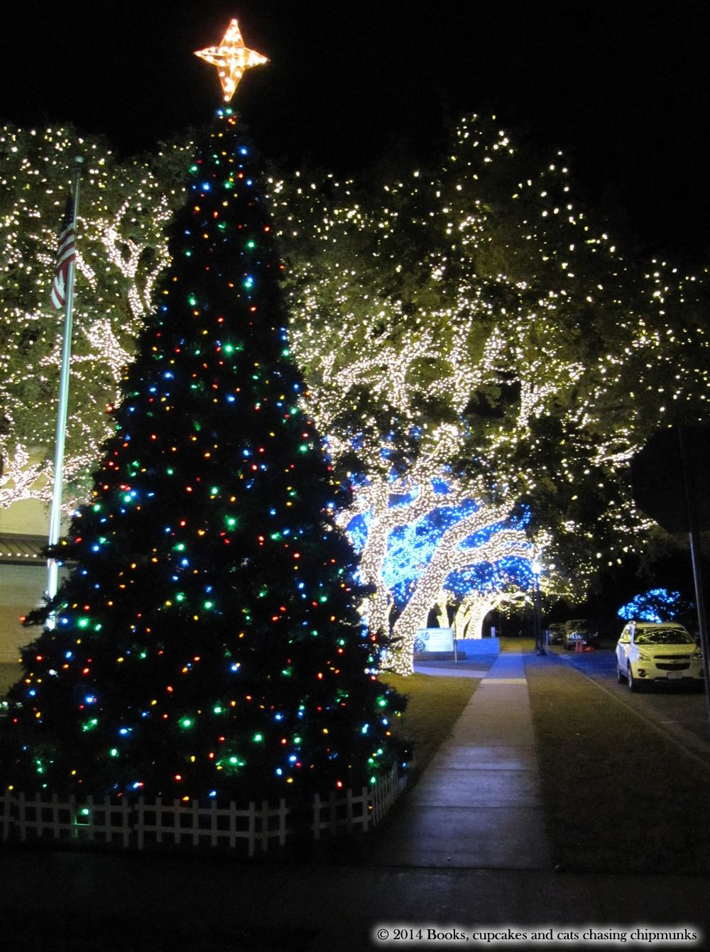 Merry Christmas Y\'All! | All Things TEXAS | Pinterest | Book ...