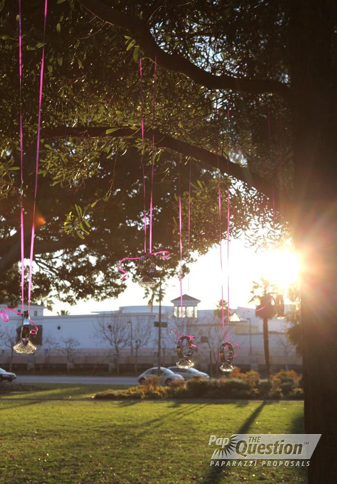 Proposal In A Park In Beverly Hills By The Heart Bandits Los