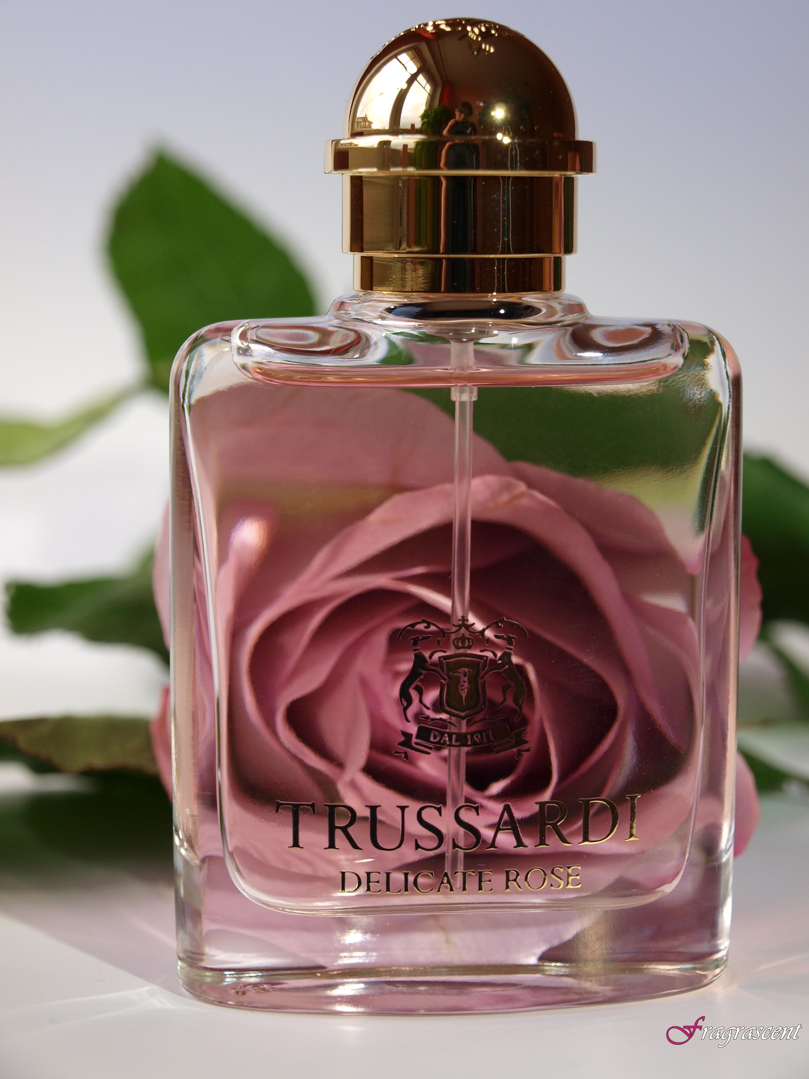 Trussardi Delicate Rose- Perfume Review On Fragrascent.pl