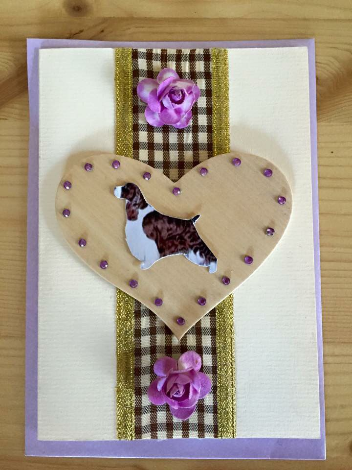 English Springer Spaniel card available