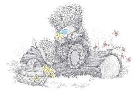 Tatty Teddy Nature