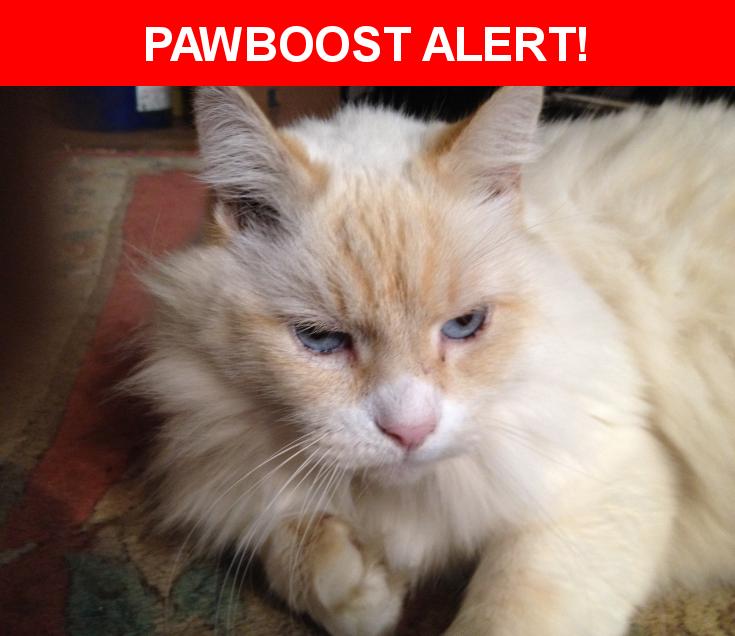 Please spread the word! Max was last seen in Hillsboro, OR 97123.    Nearest Address: Near SE 3rd Ave & SE Maple St