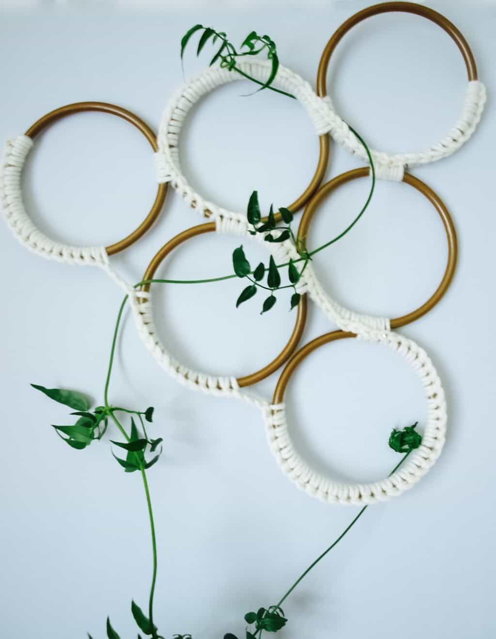 Growing Jasmine Indoors Macrame Style Trellis Diy Diy 400 x 300