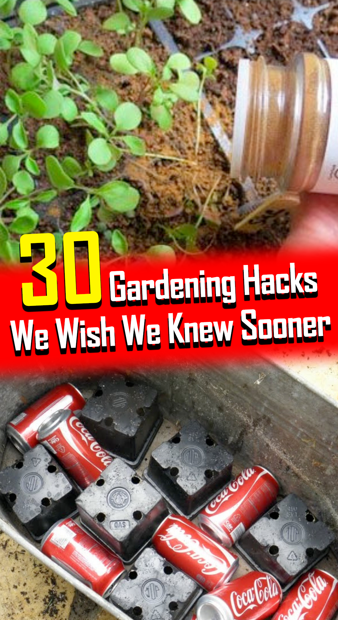 If you don't already have a fruitful garden growing in your own yard, it's never too late to start! It's also not as complicated as you think it is. In fact, you might already have tools and materials in your very own kitchen that can help get you going! These gardening hacks will show you how easy gardening can be. Who knows? You might even uncover your own green thumb!