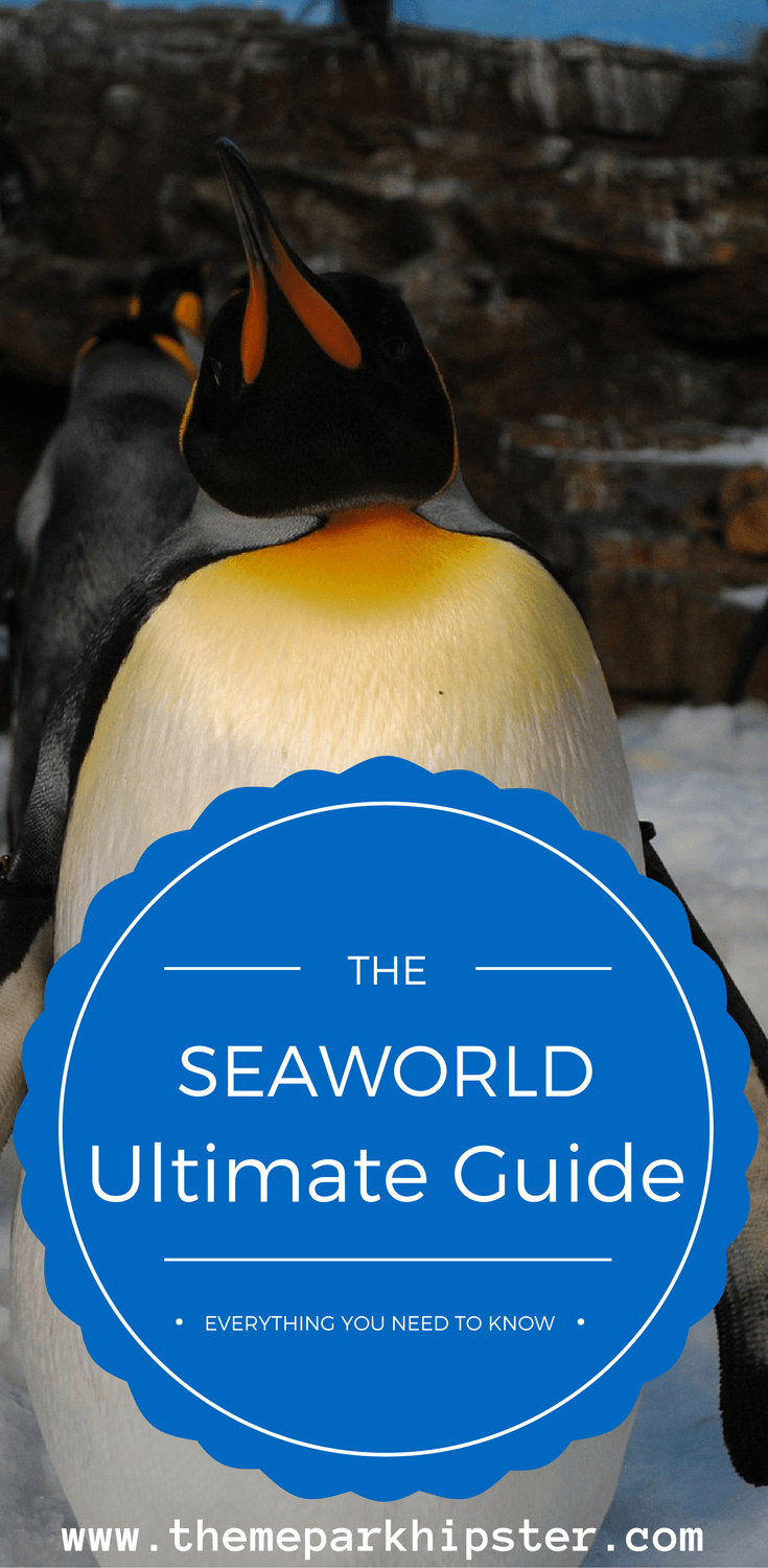 Plan the best trip to SeaWorld Orlando with this guide