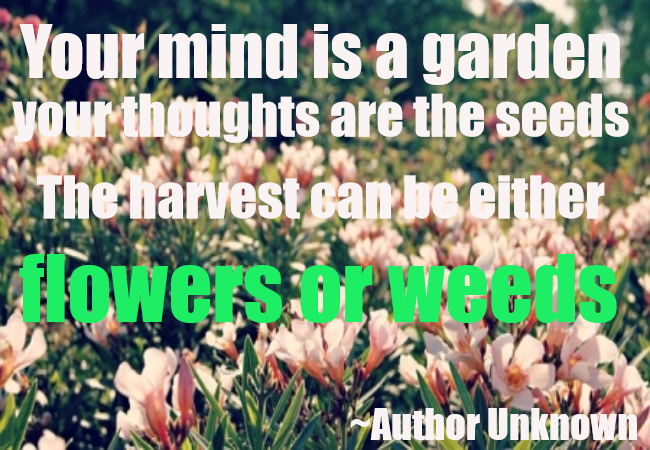 YOUR MIND IS A GARDEN.. - http://www.gardenpicsandtips.com/your-mind-is-a-garden/