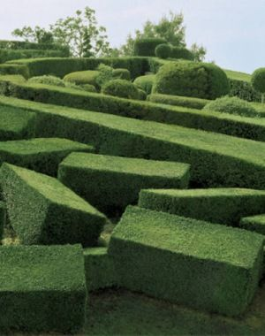 Strange And Surreal Topiary Gardens In France