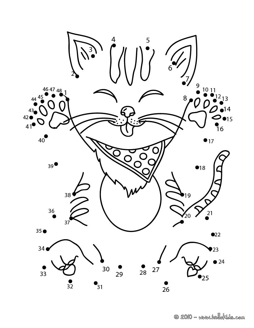PETS dot to dot FUNNY CAT dot to dot game Dots game