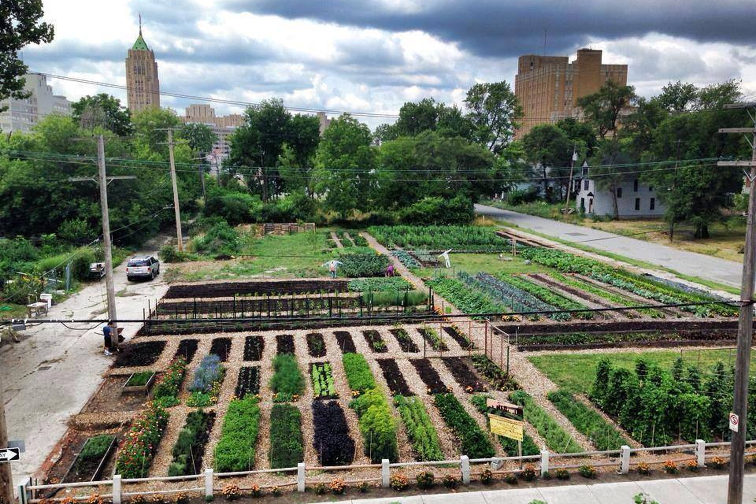 Detroit wins mufi bags 40k for north end urban farm