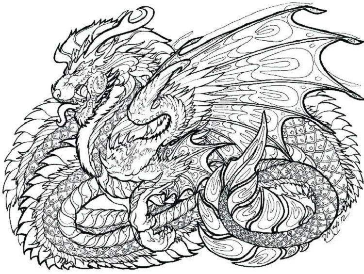 Pin On Dragons