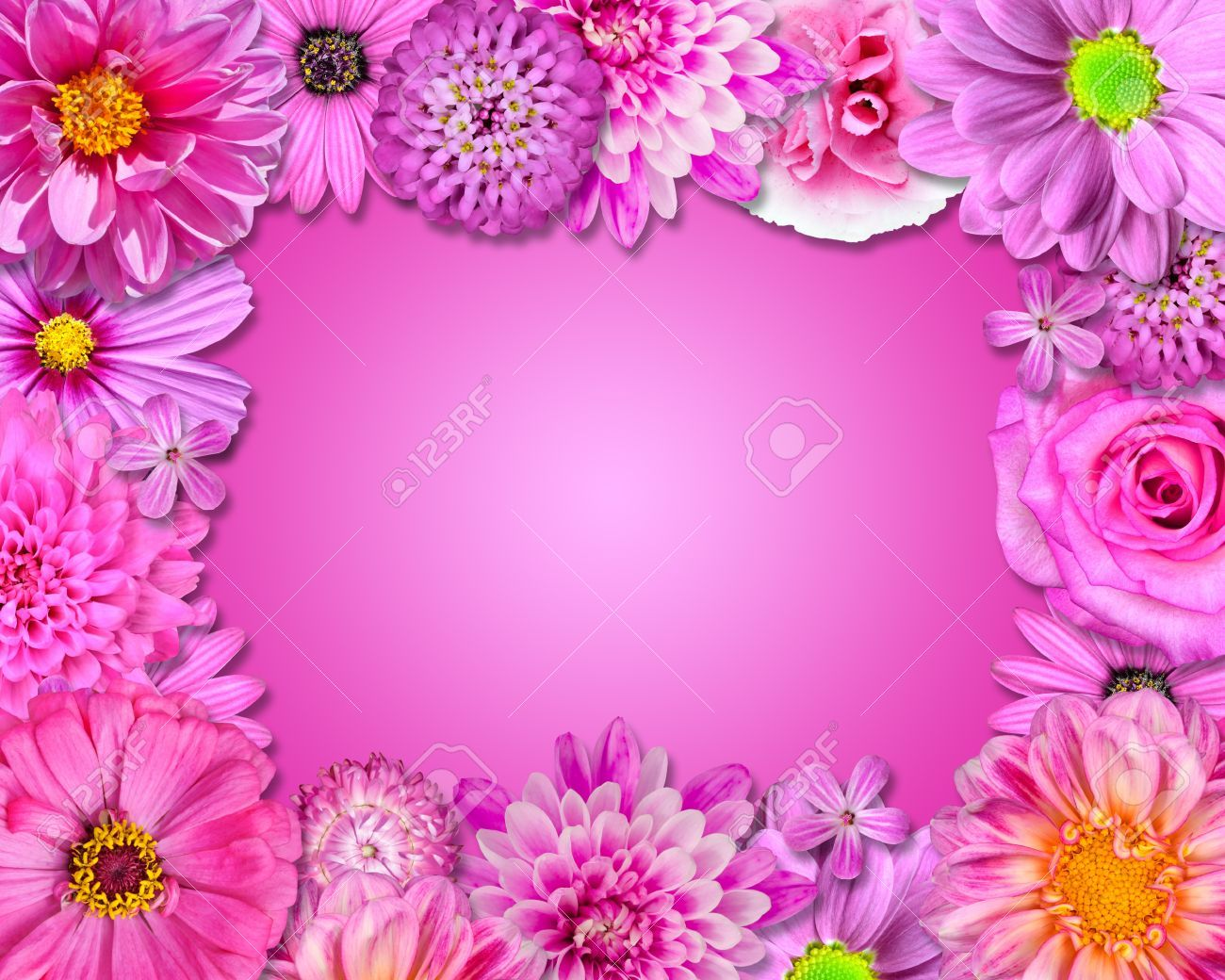 Great pink flower wallpaper laptopphone backgrounds pinterest great pink flower wallpaper laptopphone backgrounds pinterest mightylinksfo