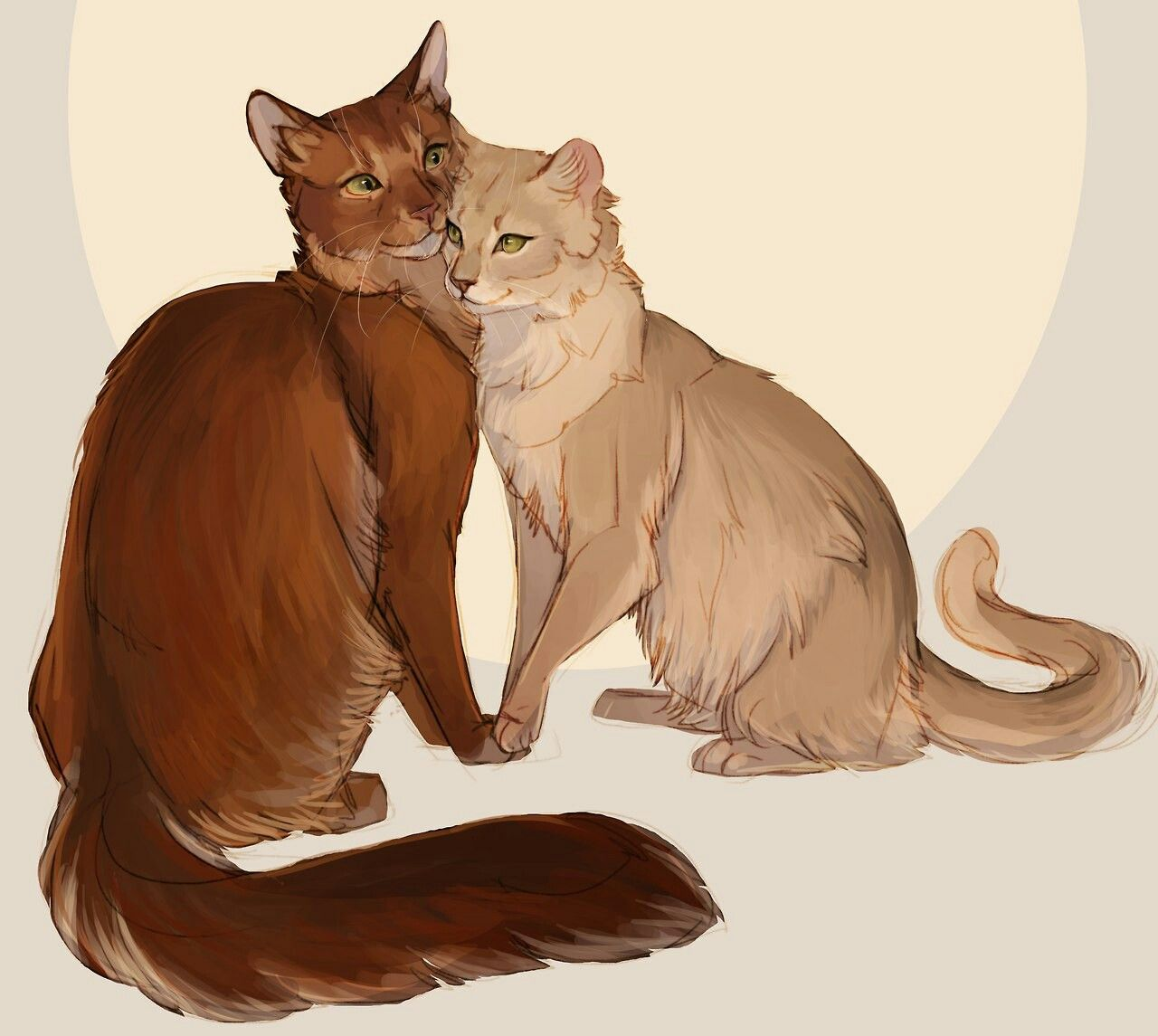 Firestar and sandstorm Katzen kunst, Katze zeichnen