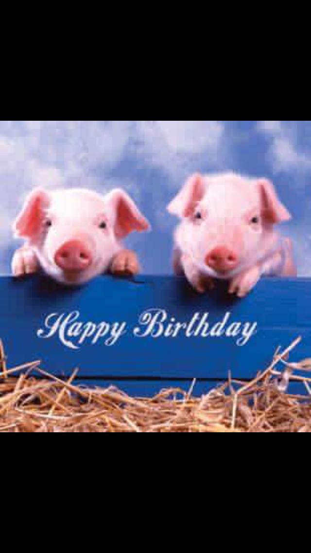 Happy Birthday Happy Birthday Pig Happy Birthday Happy Birthday Greetings