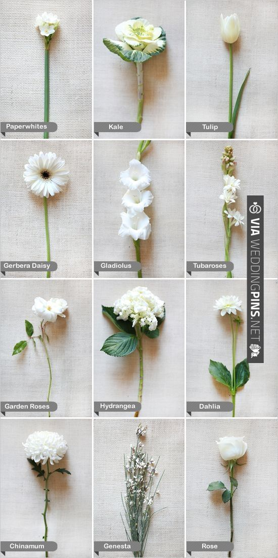 Winter flowers via weddingpins wedding inspirations winter flowers via weddingpins mightylinksfo