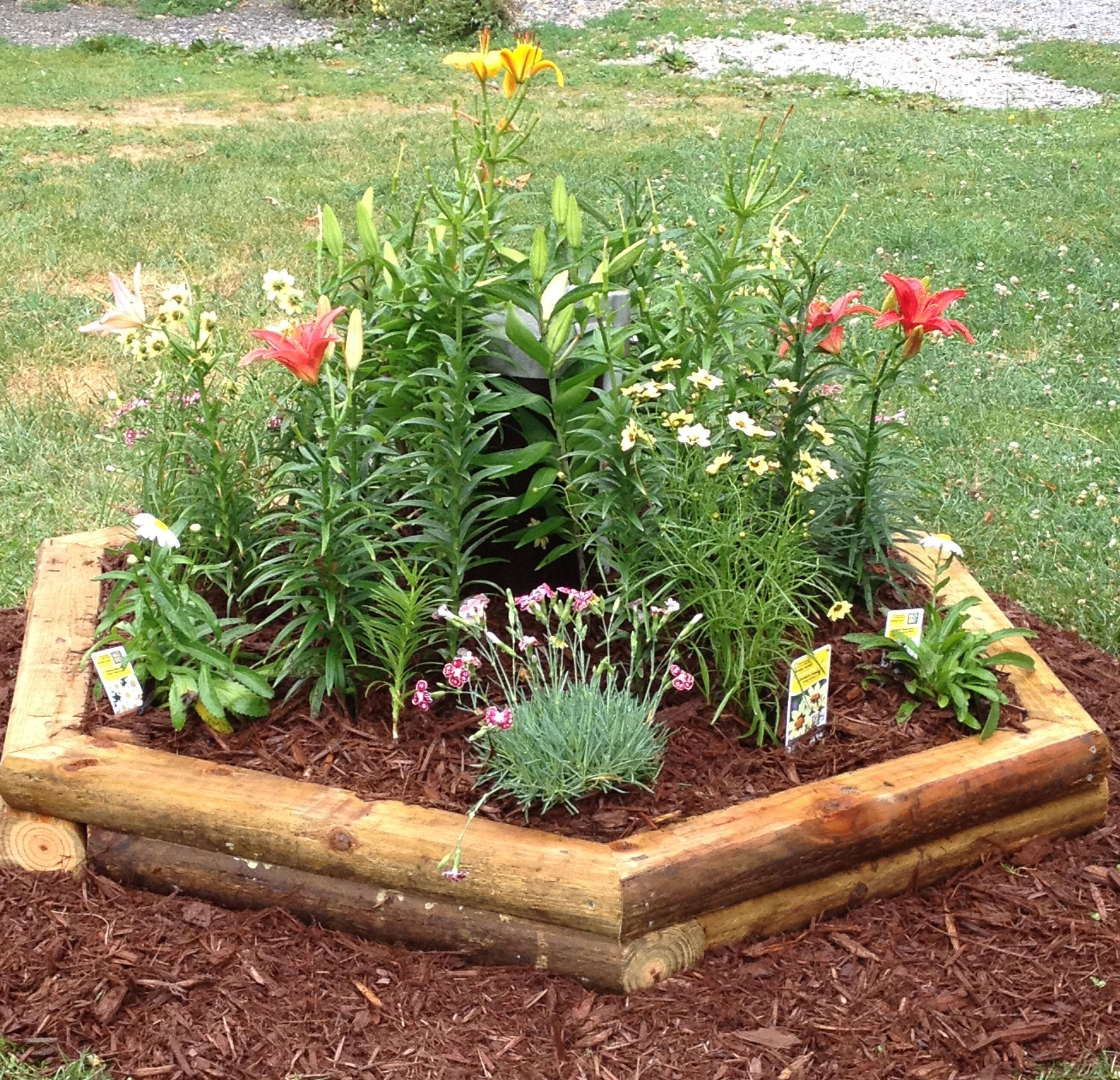 hexagonal planter we built this to hide an ugly well pipe - Garden Ideas To Hide Septic Tank