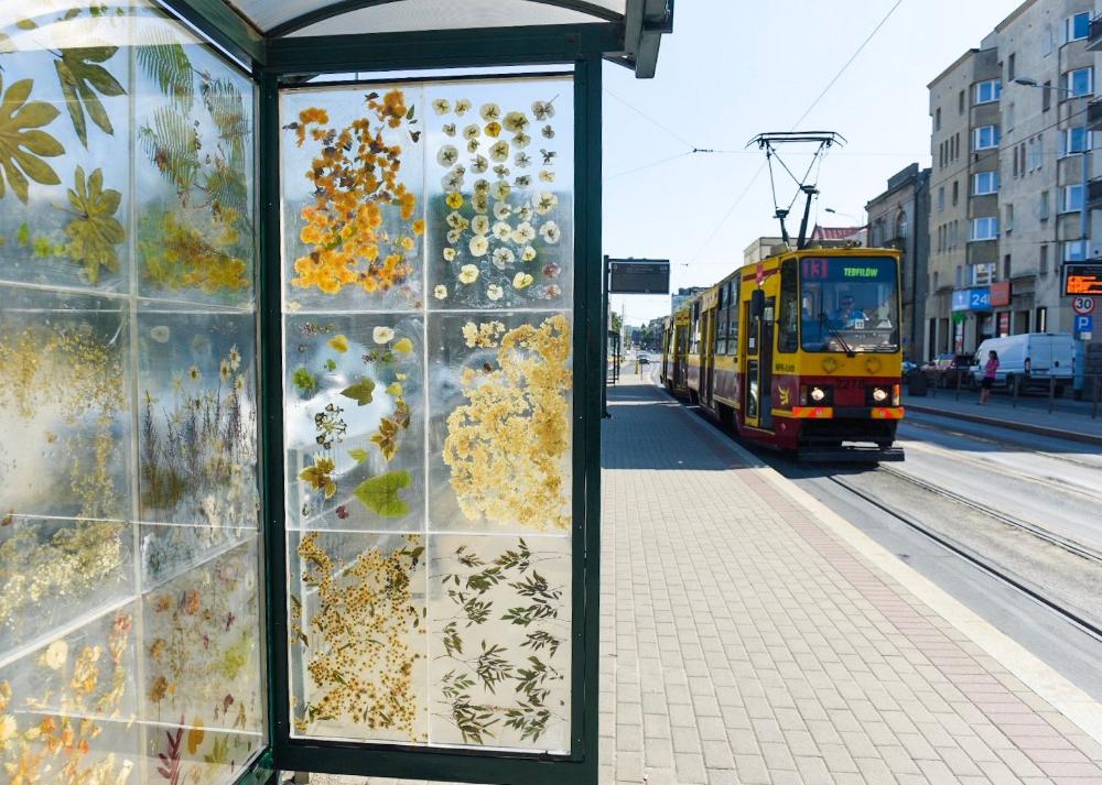 Kwiaty Zatopione W Zywicy Zamiast Reklam Tak Ozdobiono Przystanek Tramwajowy W Lodzi K Mag Magazyn Dried Flowers Colossal Art Public Art