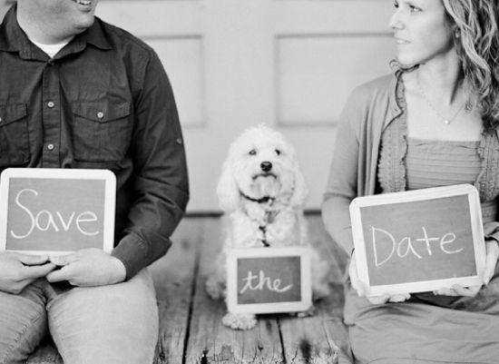 Das Aber Anstatt Mit Em Paar Und Em Hund, Mit Em Jimmy Und Em Nanook
