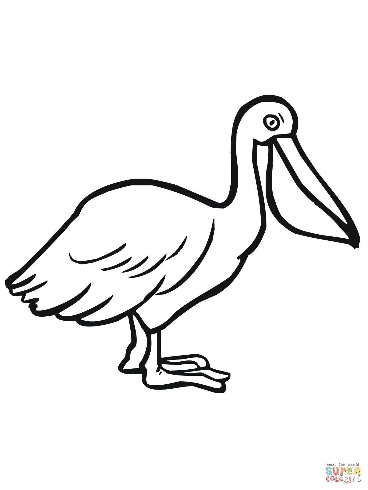 Pelican Seabird coloring page   SuperColoring.com   Animal ...