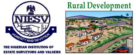 How Estate Surveyors And Valuers Can Boost Rural Development In Nigeria With Images Development Rural Estates