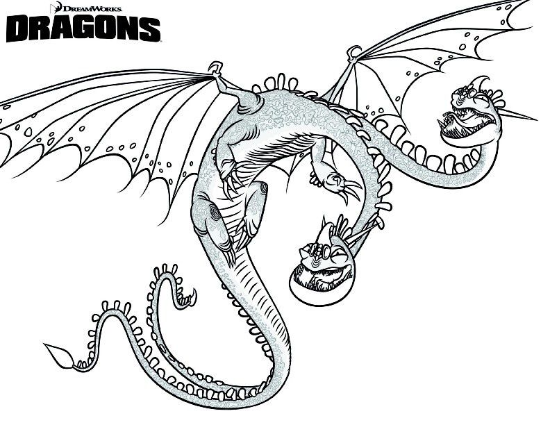 How To Train Your Dragon Coloring Pages Best Coloring Pages For Kids Dragon Pictures To Color Dragon Coloring Page How Train Your Dragon