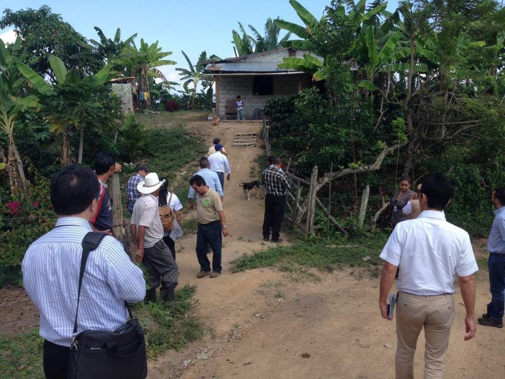 Honduras: Japón implementa proyecto agrícola  Pobladores en cinco municipios aplicaron una iniciativa sostenible. Se espera que se logre replicar en todo el país. Técnicos de la Jica supervisan un proyecto.